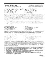 Veteran Resume Builder Usajobs Resume Template Professional Resume Template 3 Resum