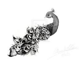 peacock drawings peacock tattoo design by captkinkster digital