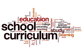 curriculum gavin district 37