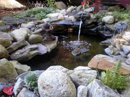 Water Rock Garden Install A Backyard Rock And Water Garden Gardening Tips