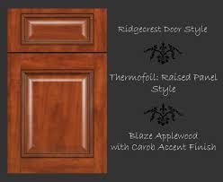 cabinet doors cabinetsextraordinaire