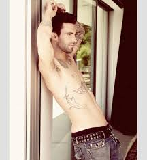 adam levine shark design busbones