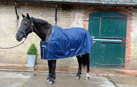 Buccas Rugs Get Ready For Winter With H U0026h 7 Turnout Rugs To Suit Your Horse