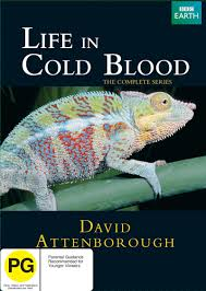 life in cold blood the complete series image at mighty ape nz