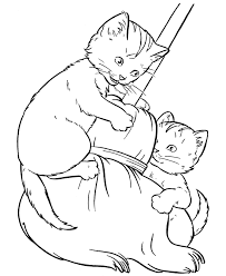 pet cat coloring kittens play broom desenhos