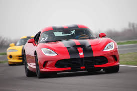 Dodge Viper Race Car - what snake is that a helpful guide to viper id rod network