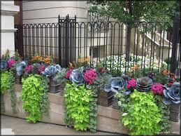 fall container plantings ornamental kale chartreuse sweet