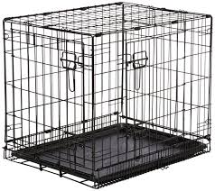 crate training should you crate train your cavalier king charles spaniel