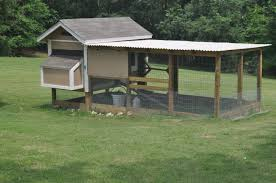 Backyard Chicken Coup by Pollo Palazzo Backyard Chickens