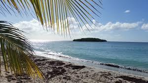 beach thanksgiving november 2014 happy u0026 we know it