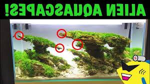 membuat aquascape bening www aquascape com home design ideas and pictures