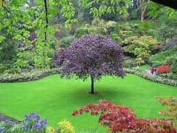 the butchart gardens the most beautiful botanical gardens in the