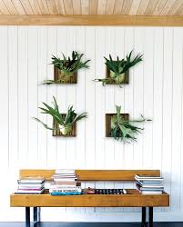 decorations artificial plants for home decor bangalore