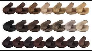hair color chart know about medium ash brown hair color chart youtube