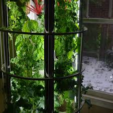 How To Build A Vertical Hydroponic Garden This Is Why Growing Food Inside Is Going Mainstream