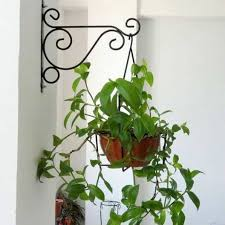 hanging pot wrought iron planters wrought iron planters