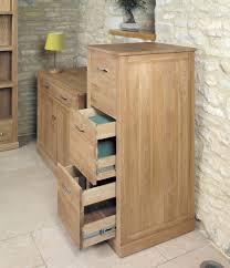 solid oak filing cabinet stunning baumhaus mobel baumhaus mobel oak 3 drawer filing cabinet