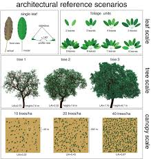 abstract tree crowns in 3d radiative transfer models impact on