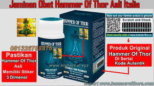 jaminan obat hammer of thor asli italia klg herbal