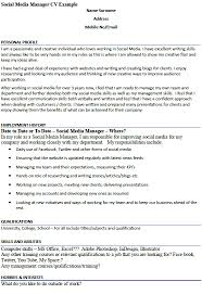 essay writing ncea level 1 letter of introduction golf cv cover