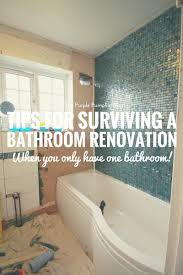tips for surviving a bathroom renovation when you only have one tips for surviving a bathroom renovation when you only have one bathroom