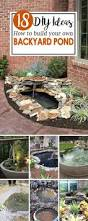 20 innovative diy pond ideas letting you build a water feature