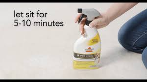 Bissell Rug Cleaner Rental Bissell Rental Clean Up Pet Urine Stain And Odor Youtube