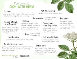 herb chart herbs are tasty introduction to herbs for kids