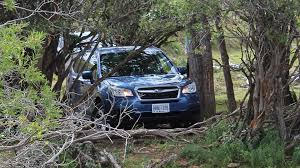 subaru forester xt off road venturing off road in the 2017 subaru forester autotrader ca
