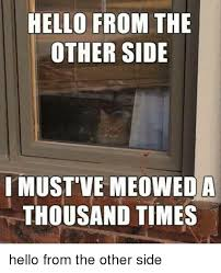 Funny Hello Meme - hello from the other side i must ve meoweda thousand times hello