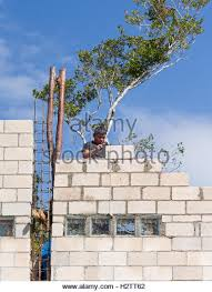 cinder block house stock photos u0026 cinder block house stock images