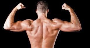 Great Shoulder - your exercise bent dumbbell rear delt raise for broad