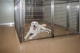 dog room dividers masonco