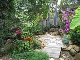 small tropical garden ideas cori u0026matt garden