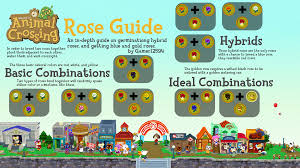 new leaf rose germination guide animalcrossing