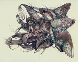 detailed colored pencil drawings of flora and fauna by marco