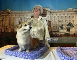 The Queen S Corgi In Focus Royal Doppelgangers Fake Royalty Photos And Images