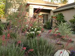 Drought Friendly Landscaping by Good Drought Tolerant Landscaping Can Increase The Value To Your