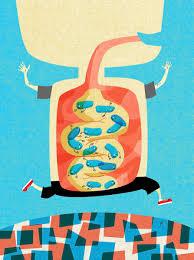 5 ways to boost your kid u0027s gut health parents