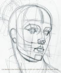 Anatomy Of Human Body Sketches Https Www Facebook Com Stefano Lanza Study Of Structure Of Human