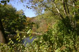 Garden Park Family Practice Clegg Memorial Garden Niches Land Trust Helping Ecoysystems