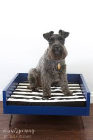 dog beds for girls best 25 modern dog beds ideas on pinterest dog bed diy dog bed