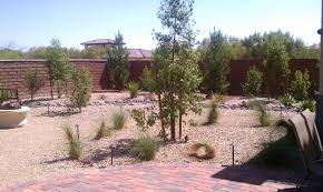 Backyard Desert Landscaping Ideas Special Desert Landscaping Ideas At Home Bistrodre Porch And