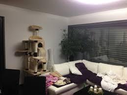 einrichtung wohnzimmer mit offener küche kuche dachstuhl wohnung