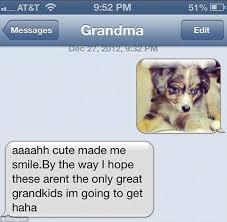 australian shepherd emoji instagram trend shows what happens when grandmas finally learn to