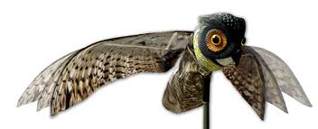 how to keep birds away from patio amazon com bird x prowler owl decoy with moving wings realistic