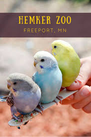 18 best places to go in mn images on pinterest minnesota twin