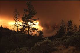 Wildfire Viewer by File Wildfire In The Pacific Northwest 8776159378 Jpg