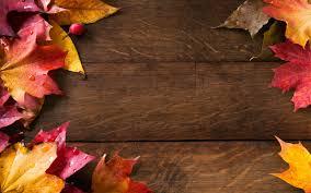 autumn nature wallpaper 62460 wallpaper download hd wallpaper