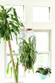 ikea planters 200 best grow images on pinterest plants pots and indoor plants